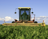 FoodAgricultureBanner-small.png