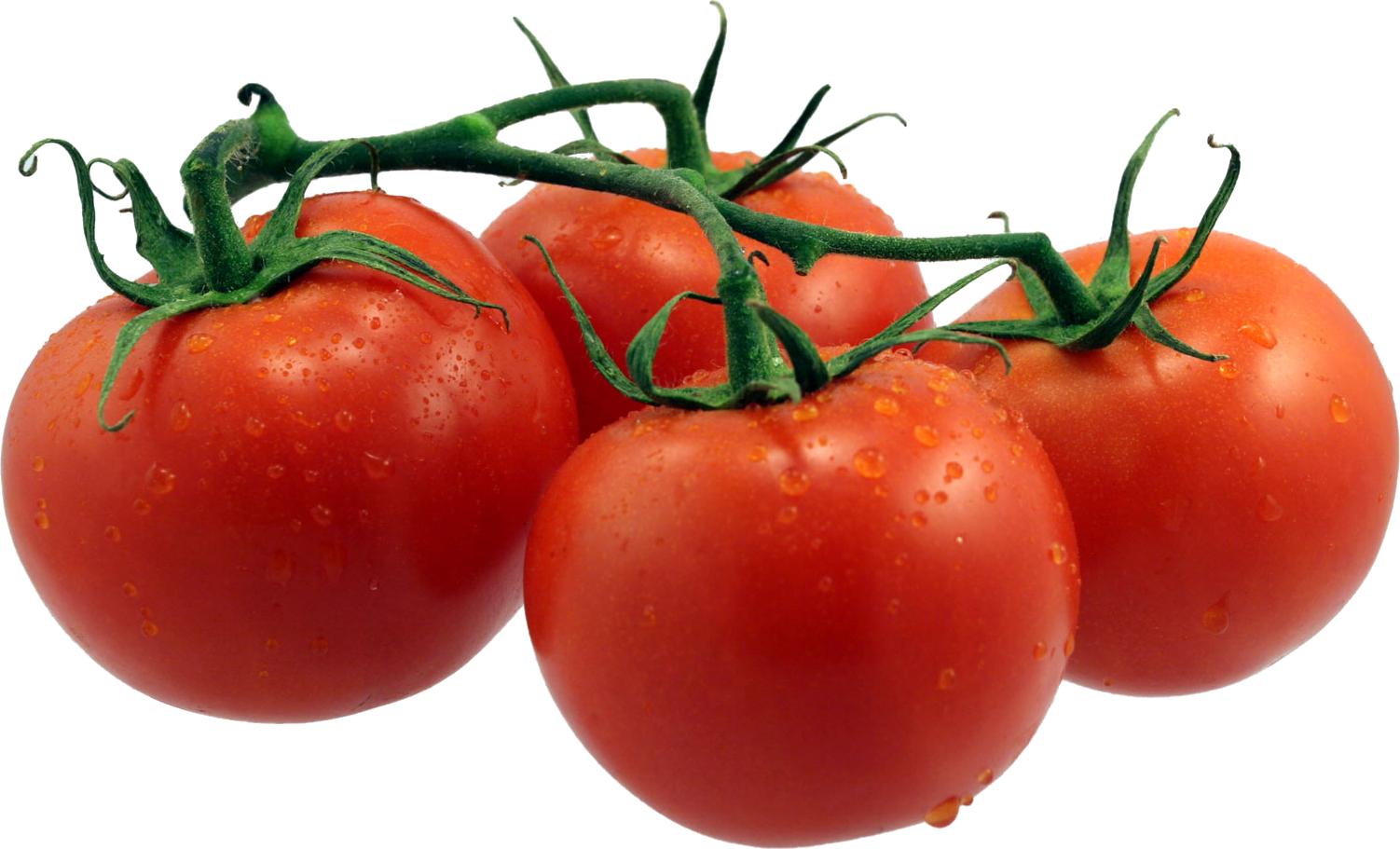 Tomatoe-Tomato.png