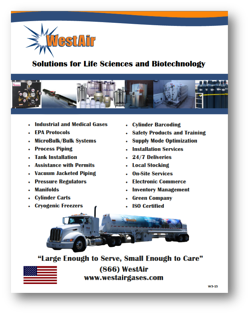 BiotechFlyerThumnail.png